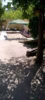 patio_pq